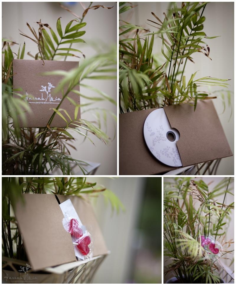 London Wedding Photography Discs