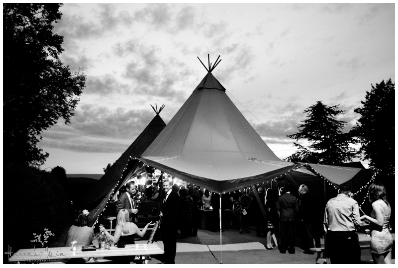 Dewsall Court Herefordshire Wedding Photography (9)