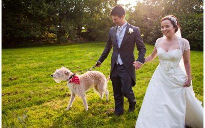 Dewsall Court, Herefordshire Wedding Photography – Amy & Dan