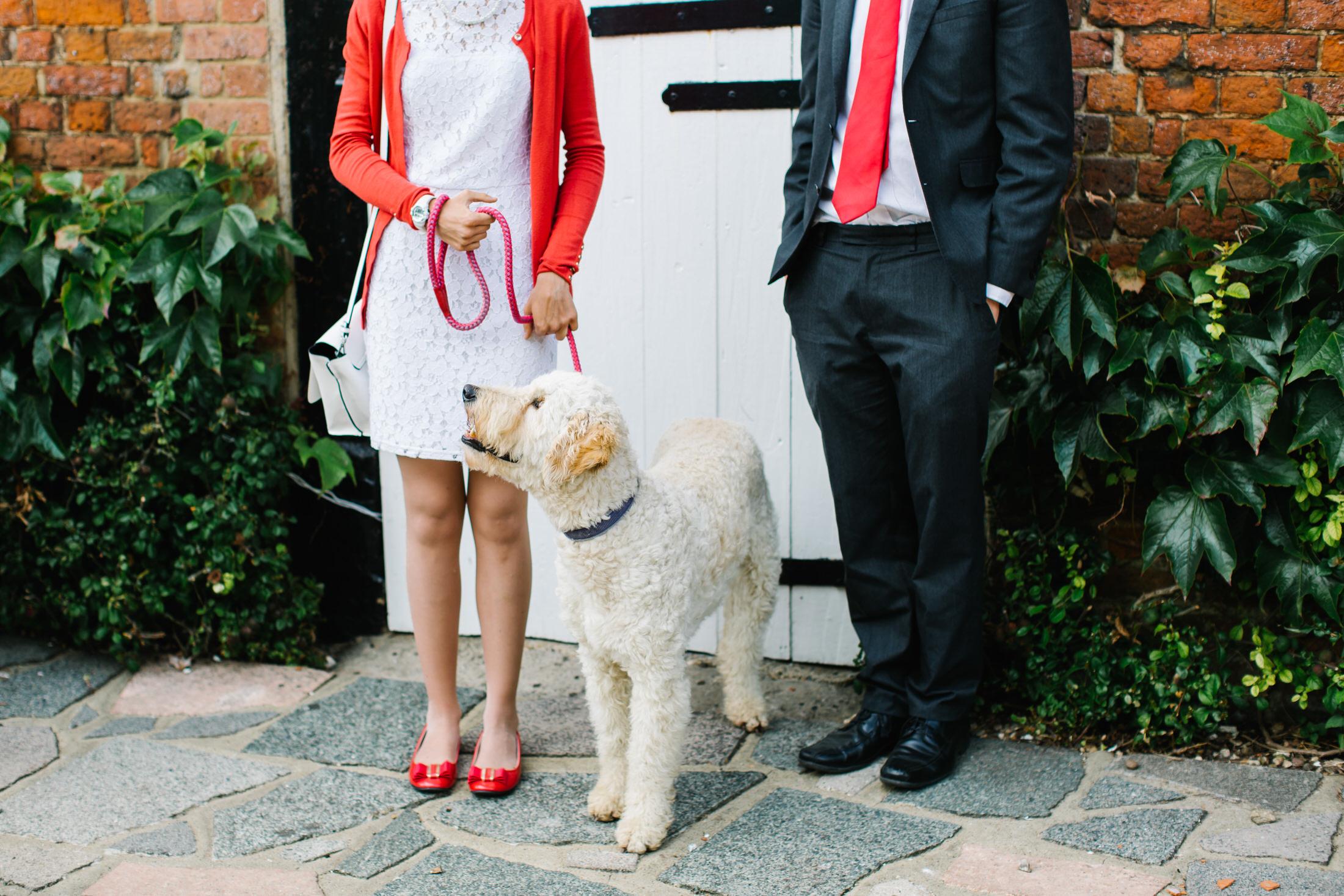 wedding in back garden in hertfordshire with dog
